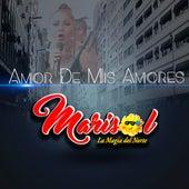 Amor de Mis Amores by Marisol y La Magia Del Norte
