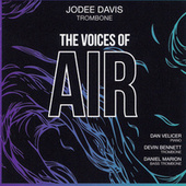 The Voices of Air by JoDee Davis