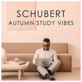 Schubert Autumnal Study Vibes by Franz Schubert