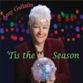 'Tis the Season by Amy Gallatin