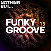 Nothing But... Funky Groove, Vol. 13 von Various Artists