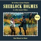 Die neuen Fälle, Fall 47: Das Ritual im Moor von Sherlock Holmes