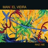 Rhizome by Manoel Vieira