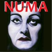 Numa by Numa Ciro