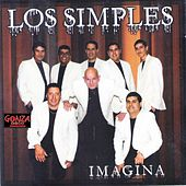 Imagina (Cover) by Los Simples