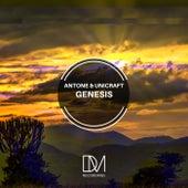 Genesis de Antone