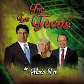 Trío Los Tecos de Mario Lee by Trio Los Tecos de Mario Lee