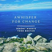 A Whisper for Change by Todd Boston