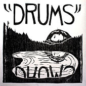 the Drums from Mount Eerie de Microphones