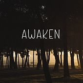 Awaken by Scientific Reasons