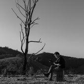 Espera a Primavera (Acústico) de Nando Reis
