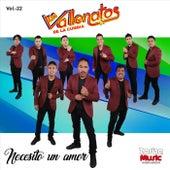 Necesito un Amor by Los Vallenatos De La Cumbia