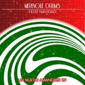 Feliz Navidad de Merengue Drums