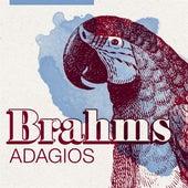 Brahms Adagios de Various Artists