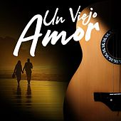 Un viejo amor de Various Artists