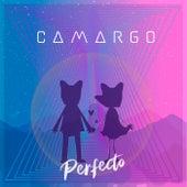 Perfecto by Zezé Di Camargo & Luciano
