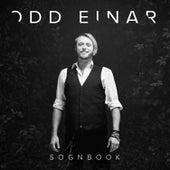 Sognbook von Odd Einar