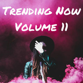 Trending Now Volume 11 fra Various Artists