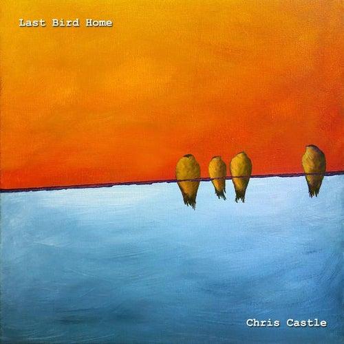 Last Bird Home by Chris Castle