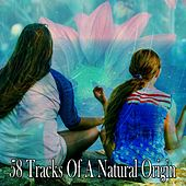 58 Tracks of a Natural Origin by Classical Study Music (1)