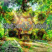 50 Soft Sounds for Tranquility von Yoga