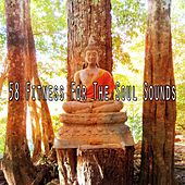58 Fitness for the Soul Sounds de Massage Tribe