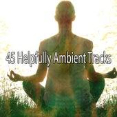 45 Helpfully Ambient Tracks von Yoga