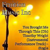 You Brought Me Through This (Db) Timothy Wright Instrumental by Fruition Music Inc.