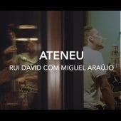 Ateneu von Rui David