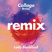 Collage (Bruise Remix) by Lady BLACK BIRD