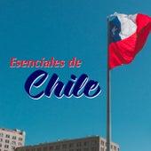 Esenciales de Chile von Various Artists