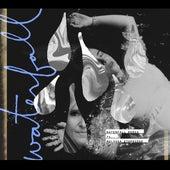 Waterfall (feat. Melissa Etheridge) (Remix) by Serena Ryder