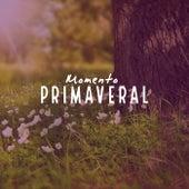 Momento Primaveral de Various Artists