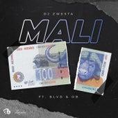 Mali von DJ Zwesta