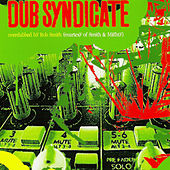 Dub Syndicate (Overdubbed by Rob Smith AKA Rsd) by Dub Syndicate