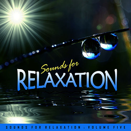 Sounds for Relaxation Vol. 5 by Everness