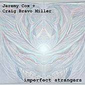 Imperfect Strangers by Jeremy Cox