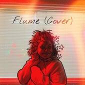 Flume (Cover) de Kenzie Jones