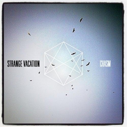 Chasm by Strange Vacation