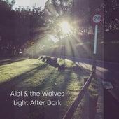 Light After the Dark de Albi