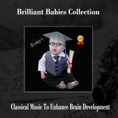 Brilliant Babies Grad Collection de Various Artists
