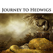 Journey To Hedwigs by Various Artists