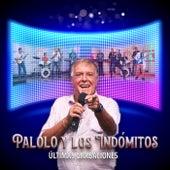 Palolo y Los Indómitos de Rec971 Music