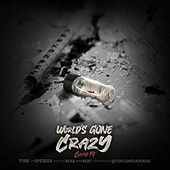 World's Gone Crazy (feat. 6persia) by Turk