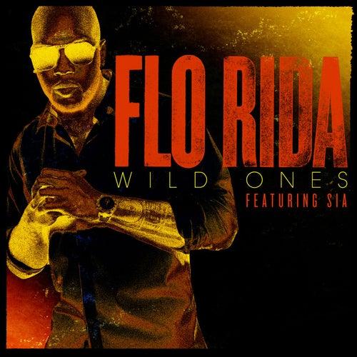 Wild Ones by Flo Rida