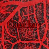 Capillary von Arrow