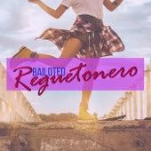 Bailoteo Reguetonero de Various Artists