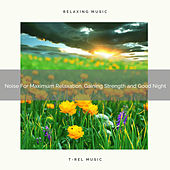 Noise For Maximum Relaxation, Gaining Strength and Good Night by Ocean Waves For Sleep (1)