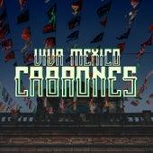 Viva México Cabrones de Various Artists