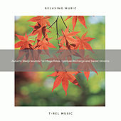 Autumn Sleep Sounds For Mega Relax, Spiritual Recharge and Sweet Dreams by Ocean Waves For Sleep (1)
